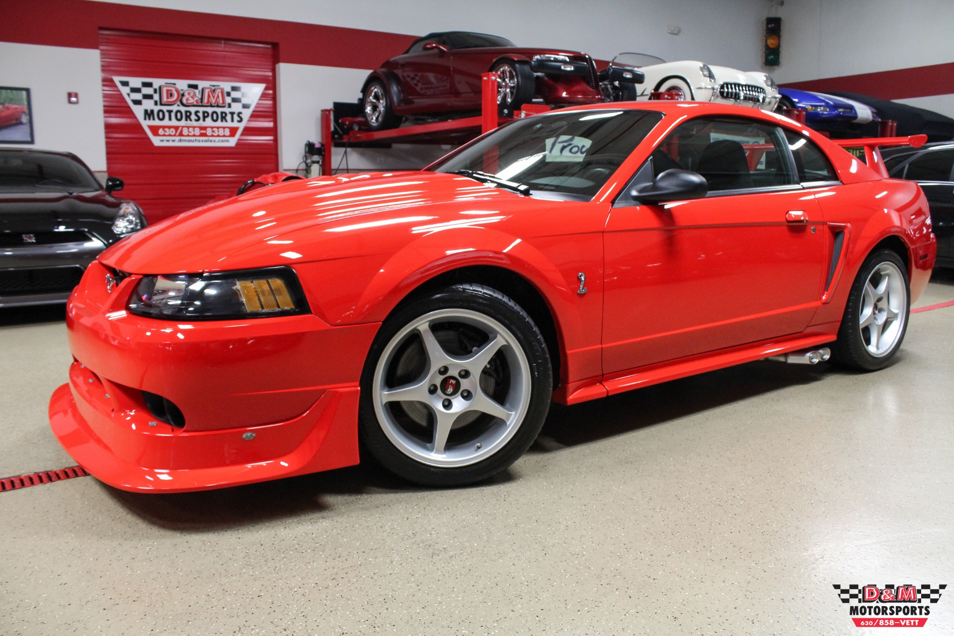2000 ford mustang cobra r stock m6471 for sale near glen ellyn il il ford dealer. Black Bedroom Furniture Sets. Home Design Ideas