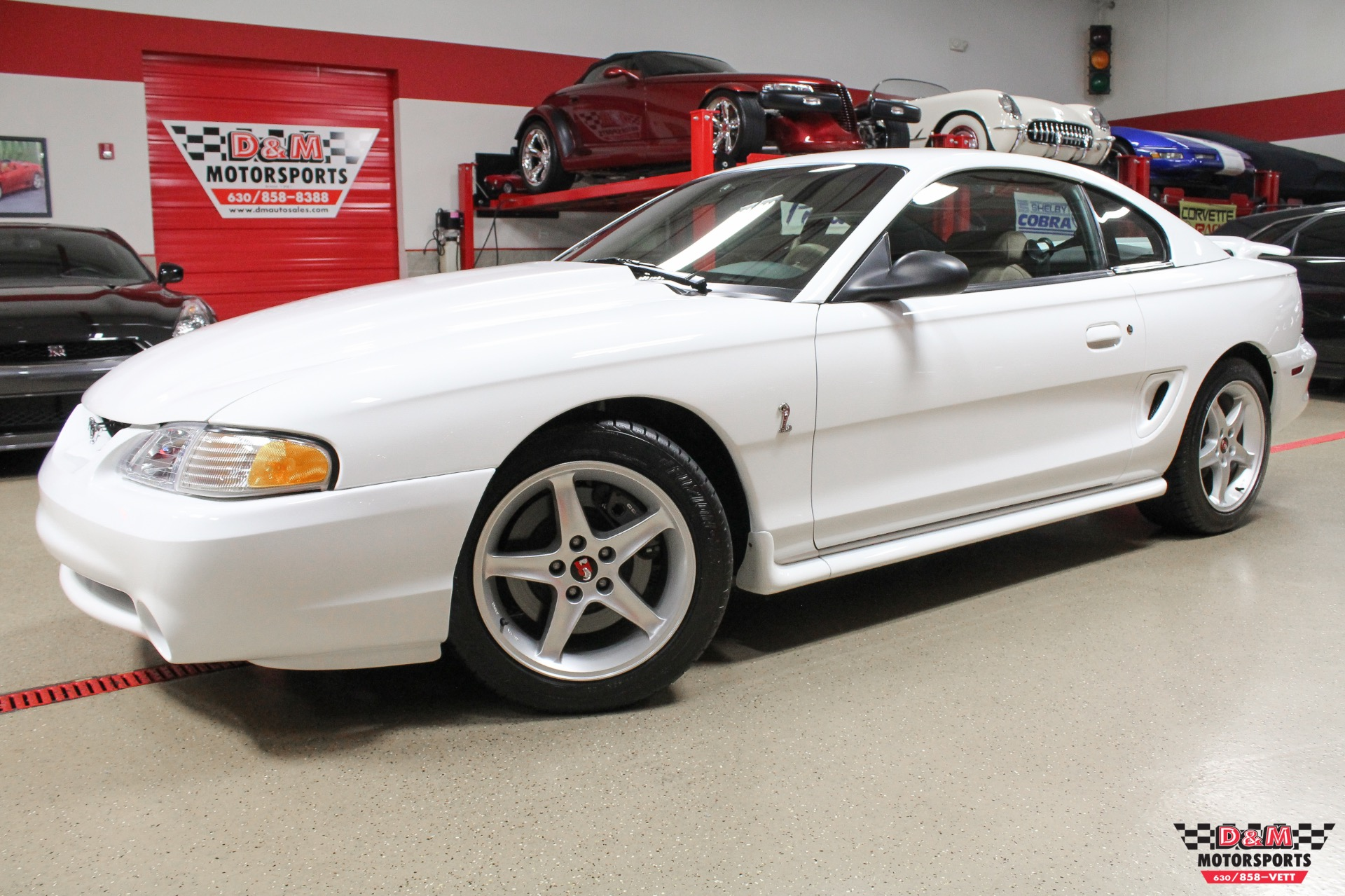 1995 ford mustang cobra r stock m6472 for sale near glen. Black Bedroom Furniture Sets. Home Design Ideas