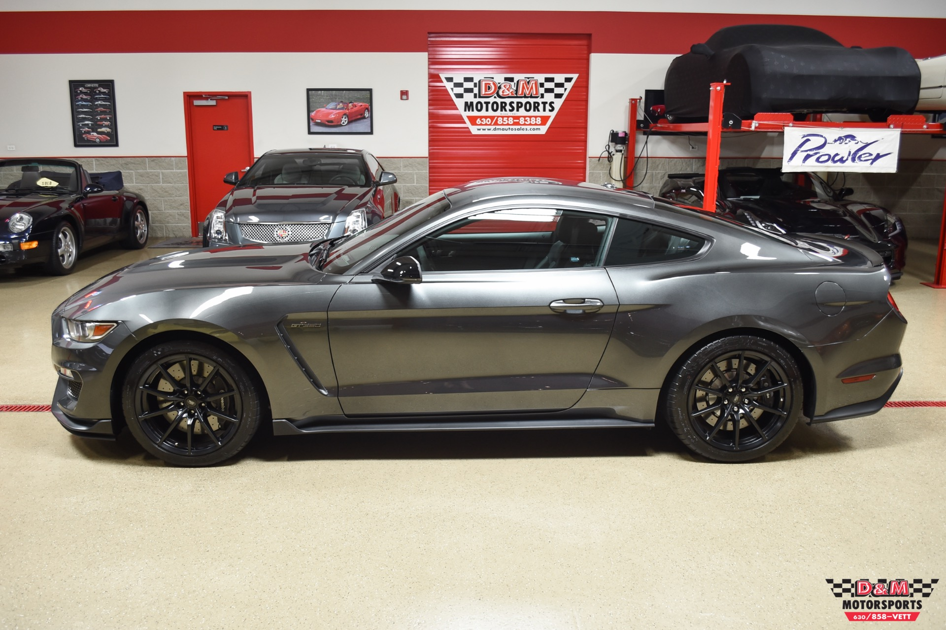 Used 2016 Ford Mustang Shelby GT350 | Glen Ellyn, IL